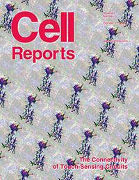 CellReportsCover2